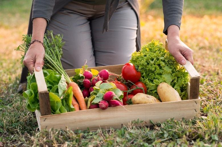 Pourquoi manger bio Voici au moins 3 bonnes raisons 3